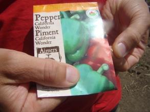 Organic Seeds Pepper