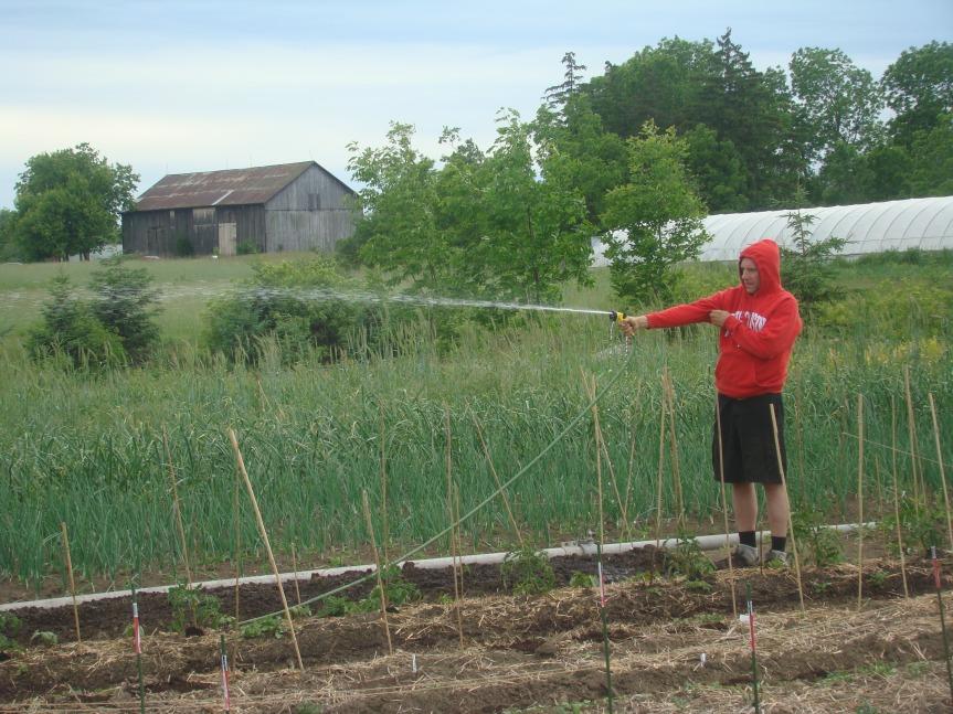 Irrigation System - Vito