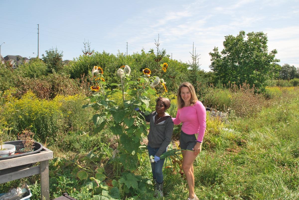 Meet Organic Farmer - AUDREY