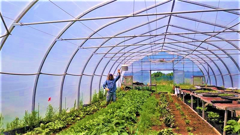 Check Into Organic Farming Supplies & Support to See Why Its Not What You Think